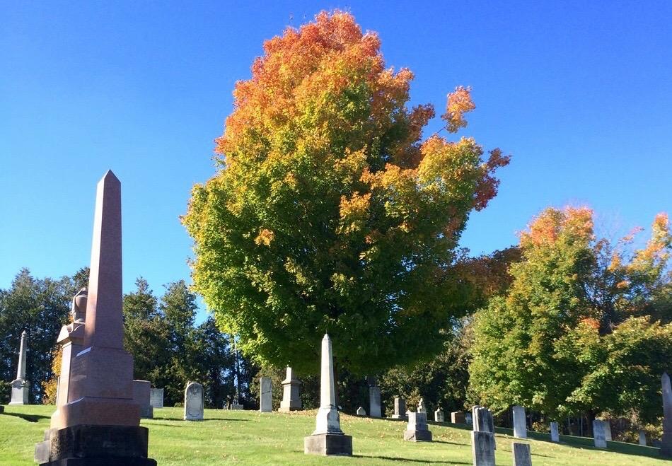 Cemetery_Autumn